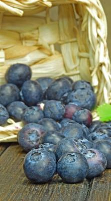 000025  Blueberries
