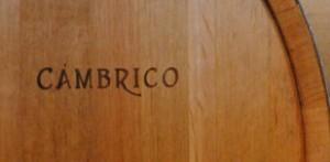 00116_06_Bodega Cámbrico_Logo_Rect