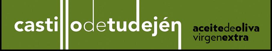 000228_01_Castillo de Tudejen Logo