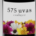 575 - Uvas de Cambrico mejores vinos, Bodega Cámbrico